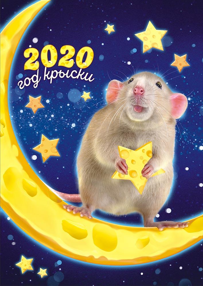 Картинки символа нового года 2020, для