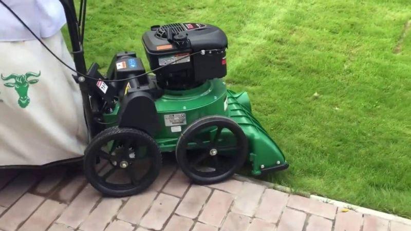 Лучший садовый пылесос на колесах