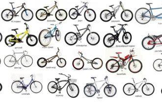 12 важных критериев выбора велосипеда