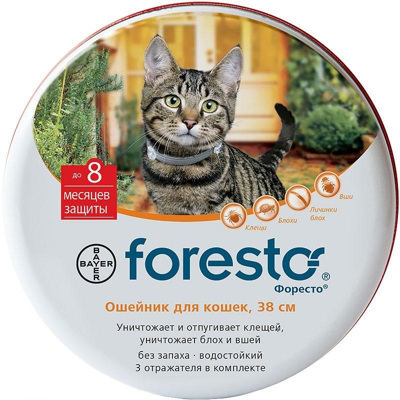 Лучшие лечебные ошейники для кошек