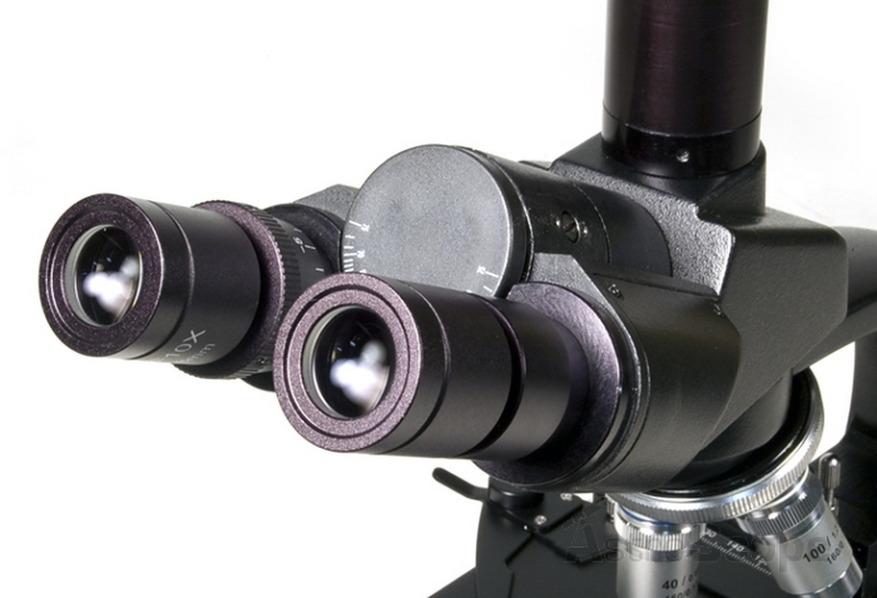 Лучший бинокулярный микроскоп
