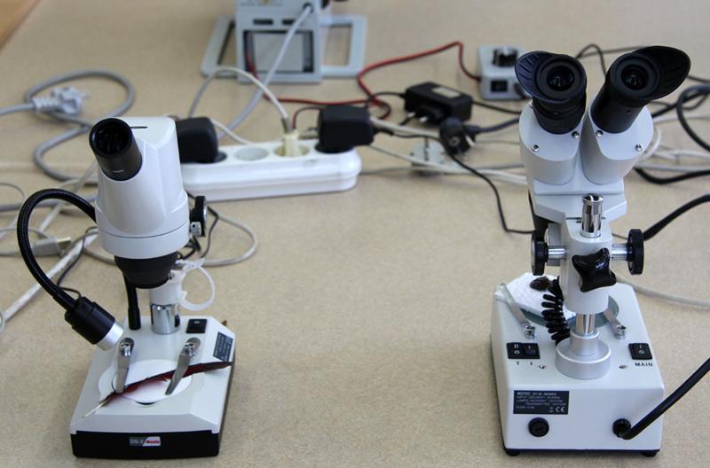 Лучший школьный микроскоп с подсветкой