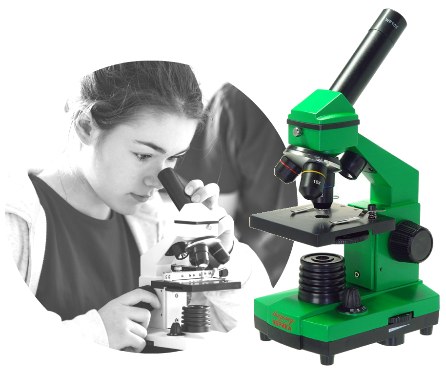 5 лучших микроскопов для школьника